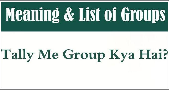 टैली में Group क्या है? Groups in Tally