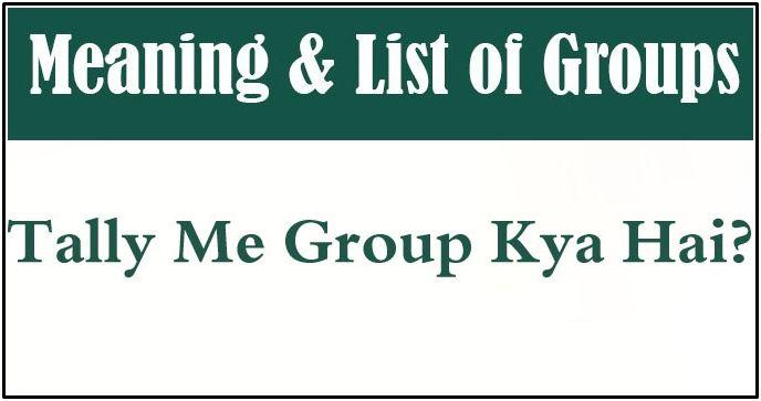 tally me groups kya hai