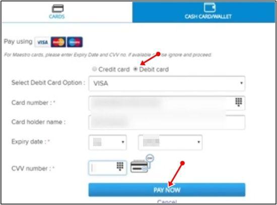 payment debit card