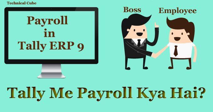 Tally Me Payroll Kya Hai? Jankari In Hindi