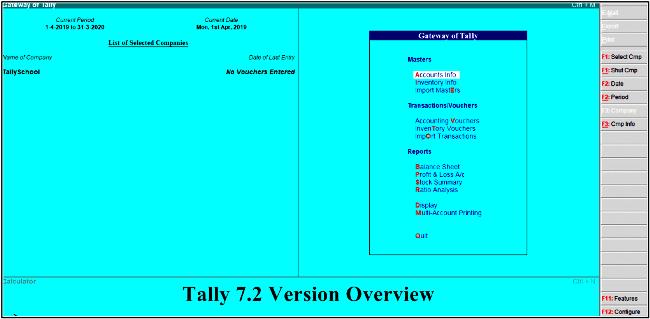 tally version