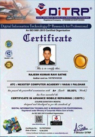 sample tally certificate
