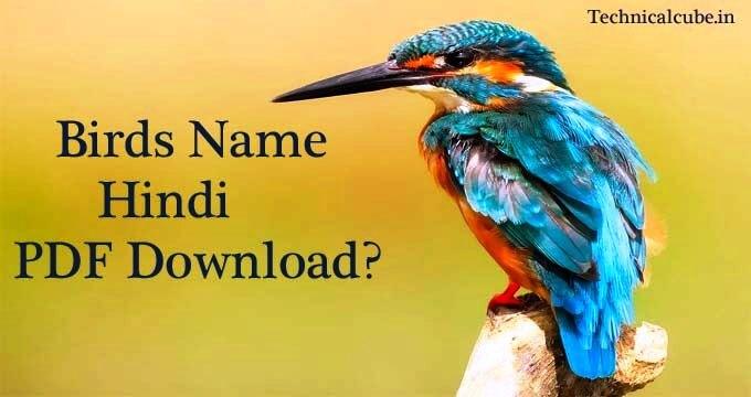 Birds Name in Hindi PDF